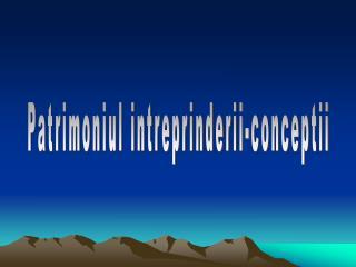 Patrimoniul intreprinderii-conceptii