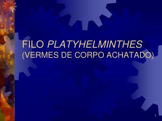 FILO PLATYHELMINTHES VERMES DE CORPO ACHATADO