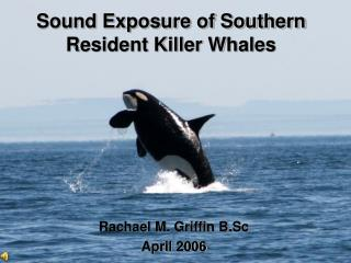 Sound Exposure of Southern Resident Killer Whales