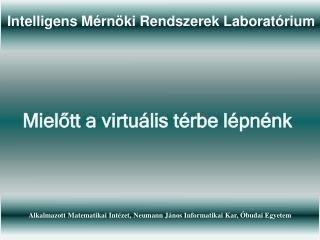 Intelligens M�rn�ki Rendszerek Laborat�rium