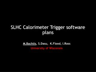 SLHC Calorimeter Trigger software plans