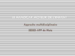 Approche multidisciplinaire SESSD-APF de Metz