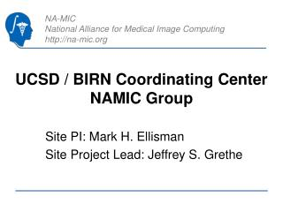 UCSD / BIRN Coordinating Center NAMIC Group