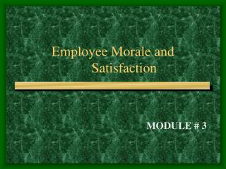 Employee Morale and 	Satisfaction