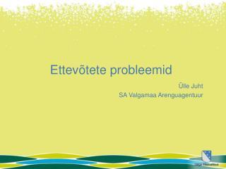 Ettevõtete probleemid