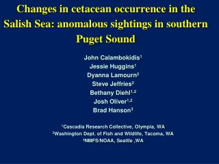 Changes in cetacean occurrence in the Salish Sea: anomalous sightings in southern Puget Sound