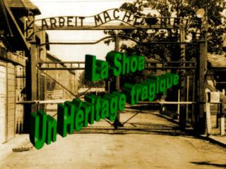 La Shoa Un Héritage tragique
