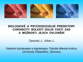 BIOLOGICKÉ  A  PSYCHOSOCIÁLNÍ  PREDIKTORY CHRONICITY  BOLESTÍ  DOLNÍ  ČÁSTI  ZAD