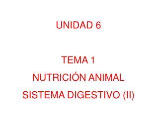 UNIDAD 6 TEMA 1 NUTRICIÓN ANIMAL SISTEMA  DIGESTIVO  (II )