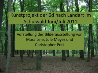 Kunstprojekt der 6d nach  Landart  im  S chulwald Juni/Juli 2011