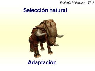 Ecología Molecular – TP 7