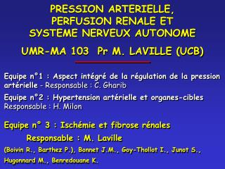 PRESSION ARTERIELLE,            PERFUSION RENALE ET          SYSTEME NERVEUX AUTONOME