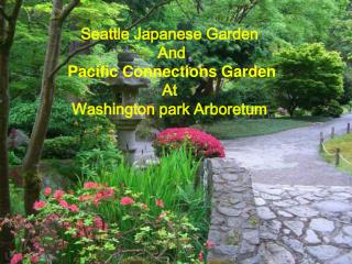 Seattle Japanese Garden  And  Pacific Connections Garden  At  Washington park Arboretum