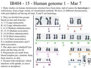 IB404 - 15 - Human genome 1 – Mar 7