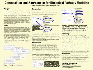 Composition and Aggregation for Biological Pathway Modeling