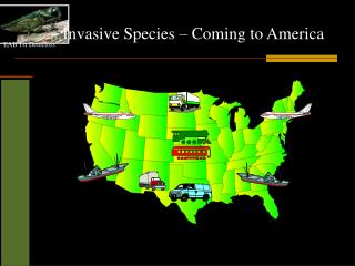 Invasive Species � Coming to America