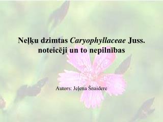 Neļķu dzimtas  Caryophyllaceae Juss. noteicēji un to nepilnības