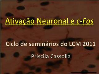 Ativação Neuronal e  c-Fos