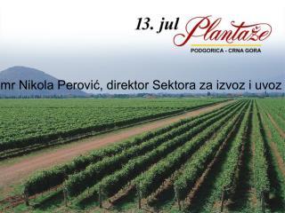 mr Nikola Perović, direktor Sektora za izvoz i uvoz