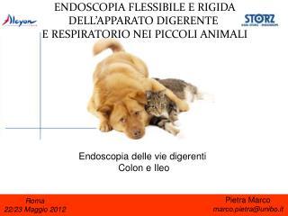Roma 22/23 Maggio 2012