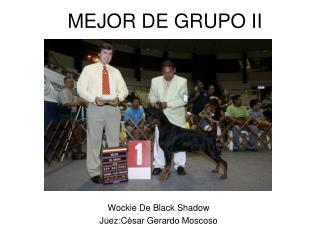 MEJOR DE GRUPO II