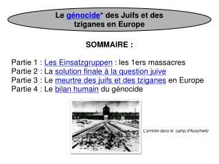 Le  génocide * des Juifs et des tziganes en Europe