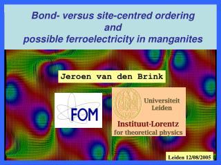 Jeroen van den Brink