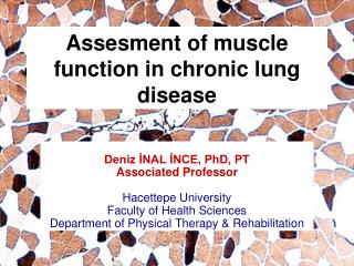 Assesment of muscle function in chronic lung disease