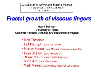 Fractal growth of viscous fingers