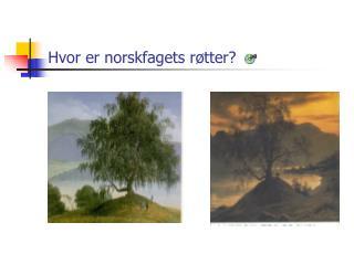 Hvor er norskfagets r tter