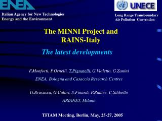 The MINNI Project and RAINS-Italy