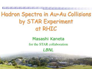 Hadron Spectra in Au+Au Collisions  by STAR Experiment  at RHIC