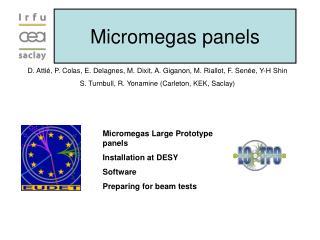 Micromegas panels