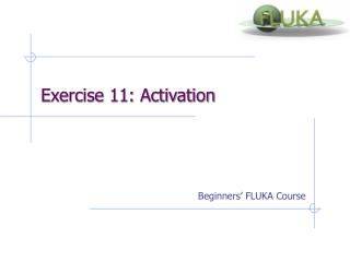 Beginners'  FLUKA Course