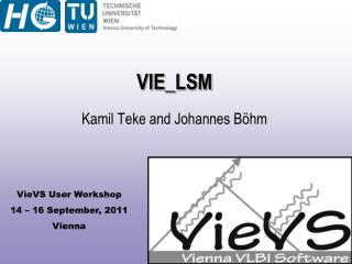 VIE_ LSM