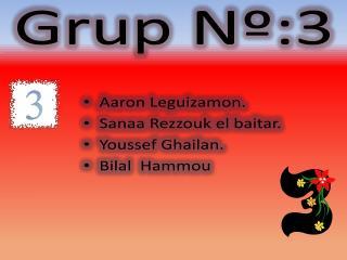 Grup Nº:3