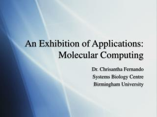 An Exhibition of Applications: Molecular Computing