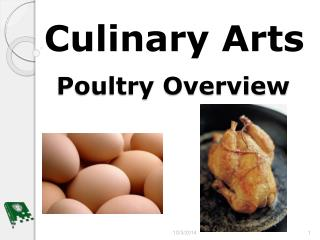 Poultry Overview