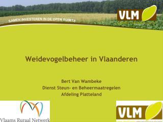 Weidevogelbeheer in Vlaanderen