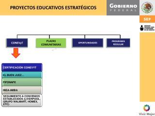 PROYECTOS EDUCATIVOS ESTRATÉGICOS