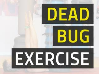 Dead Bug Exercise - Train Abs Without Back Pain