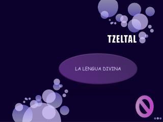 TZELTAL