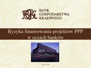 Ryzyka finansowania projektów PPP w oczach banków