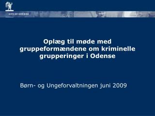 Opl g til m de med gruppeform ndene om kriminelle grupperinger i Odense