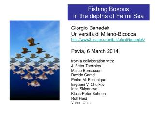 Fishing Bosons  in the depths of Fermi Sea