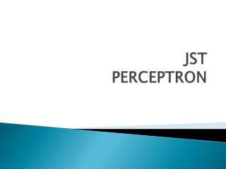 JST PERCEPTRON