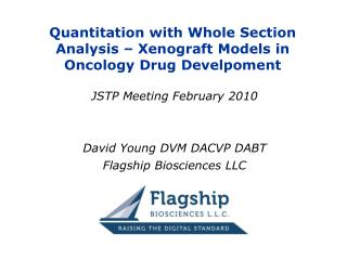Quantitation with Whole Section Analysis – Xenograft Models in Oncology Drug Develpoment