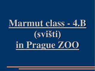 Marmut class - 4.B (svišti) in Prague ZOO