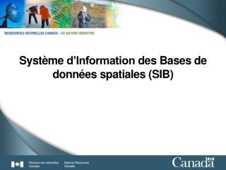 Système d'Information  des Bases de  données spatiales  (SIB)