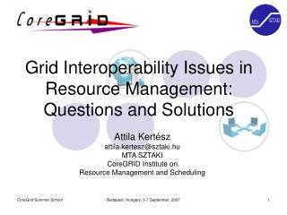 Grid Interoperability Issues in Resource Management: Questions and Solutions